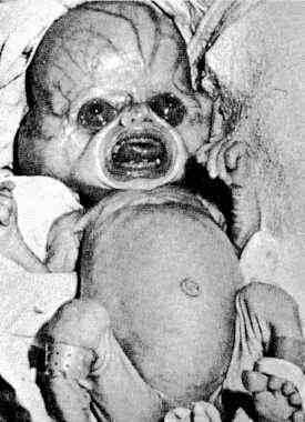 Baby Alien Hybrid