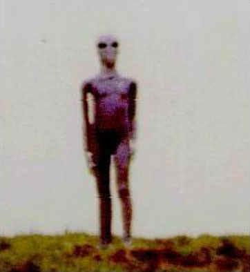 http://alien-ufo-research.com/images/alien/alien_on_hill.jpg