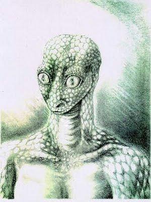 Reptilian Picture