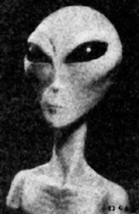 alien ufo the grays