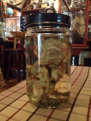 Alien in a jar